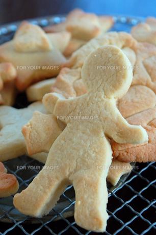 子供の手作りクッキーの写真素材 [FYI00244493]
