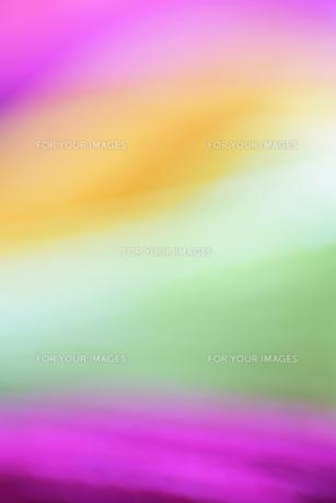 黄緑と黄色、ピンクのぼかした背景1の写真素材 [FYI00244539]