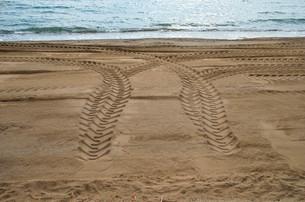 砂浜のタイヤ痕の写真素材 [FYI00244568]