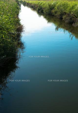 自然な川の素材 [FYI00244569]