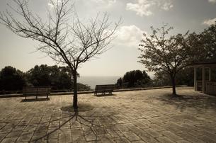 海の見える広場の写真素材 [FYI00244596]