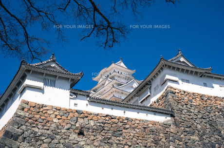姫路城の素材 [FYI00244635]