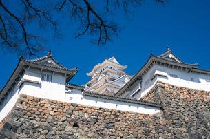 姫路城の写真素材 [FYI00244635]