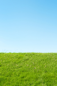 草原と青空の素材 [FYI00244686]