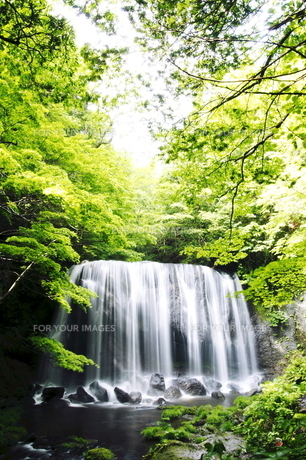滝のある風景の素材 [FYI00244864]