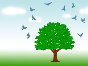 群がる鳩と一本の木の写真素材 [FYI00244877]