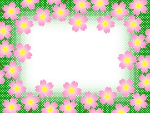 桜のフレームの写真素材 [FYI00245054]