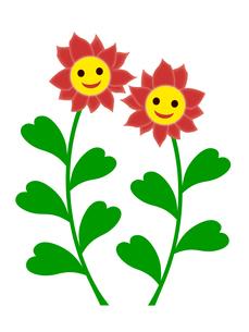 笑顔の花の写真素材 [FYI00245090]