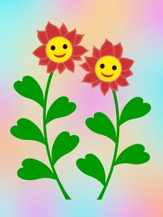 笑顔の花の写真素材 [FYI00245092]
