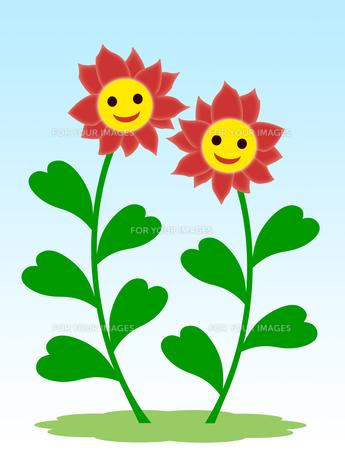 笑顔の花の素材 [FYI00245094]