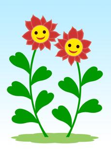 笑顔の花の写真素材 [FYI00245094]
