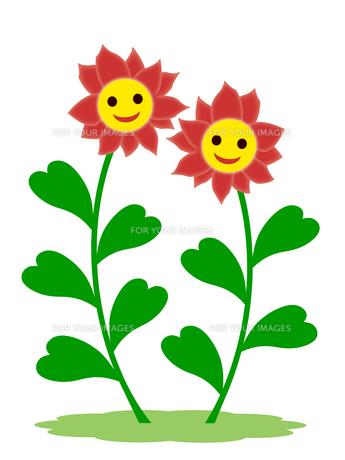 笑顔の花の素材 [FYI00245098]