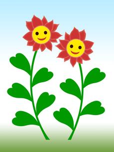 笑顔の花の写真素材 [FYI00245105]