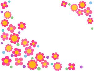花と水玉の写真素材 [FYI00245192]