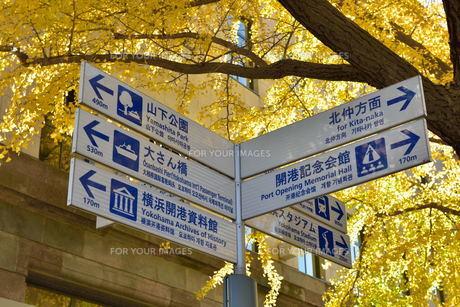 横浜・観光スポットの案内版の素材 [FYI00245634]