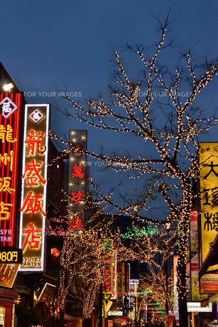 ネオンが彩る横浜中華街の街並みの素材 [FYI00245656]
