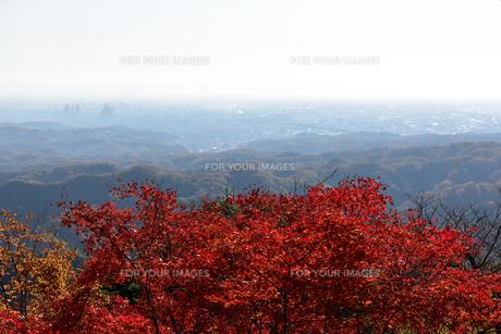 高尾山からの一望の写真素材 [FYI00245663]