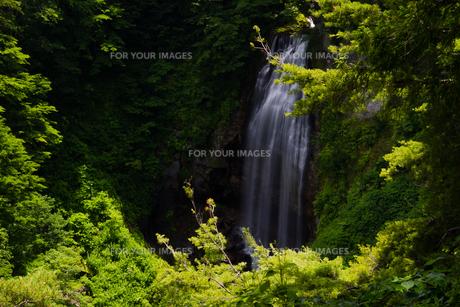 モーカケの滝の素材 [FYI00245718]