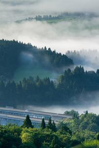 霧の国道117号の素材 [FYI00245720]