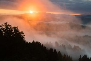 山古志 朝日に輝く雲海と日輪の写真素材 [FYI00245733]