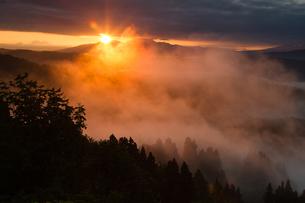 山古志 朝陽に輝く雲海の写真素材 [FYI00245741]