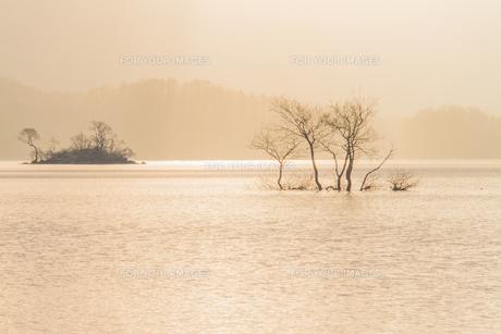裏磐梯・桧原湖の柔らかな朝の光に包まれた風景の素材 [FYI00245754]