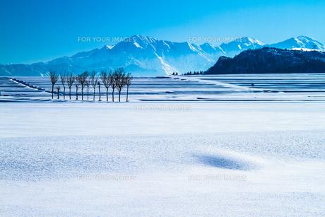 雪原のハサ木と越後三山の素材 [FYI00245772]