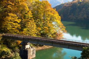 紅葉の田子倉湖と只見線の鉄橋の素材 [FYI00245812]