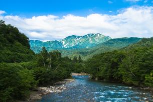 銀山平から望む夏の越後駒ヶ岳の素材 [FYI00245816]