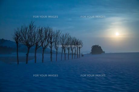 雪原のハサ木と満月の素材 [FYI00245828]