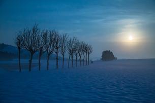 雪原のハサ木と満月の写真素材 [FYI00245828]
