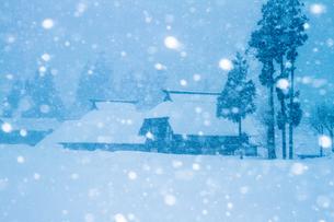 荻ノ島集落の茅葺き民家と降り続く雪の素材 [FYI00245841]