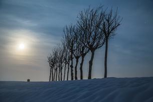 ハサ木と満月の雪景色の写真素材 [FYI00245847]