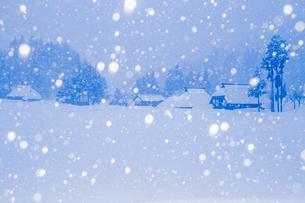 荻ノ島集落 茅葺き民家と降り続く雪の素材 [FYI00245850]