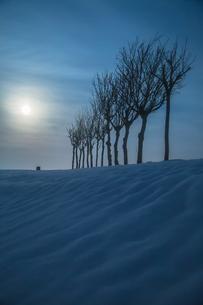 ハサ木と満月の雪景色の写真素材 [FYI00245851]