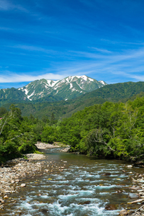 銀山平から望む夏の越後駒ヶ岳の素材 [FYI00245882]