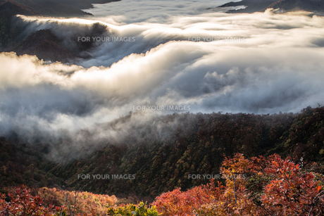 枝折峠 雲海・滝雲と紅葉の素材 [FYI00245893]