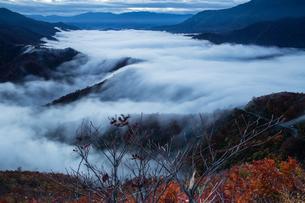 枝折峠 雲海・滝雲と紅葉の素材 [FYI00245901]