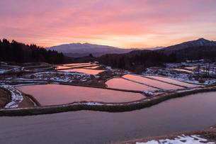 薄氷の張った初冬の棚田に映り込む朝焼けと守門岳の素材 [FYI00245922]