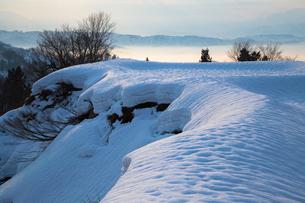 長岡市川口峠 朝焼けに染まる雪と雪紋様の素材 [FYI00245958]