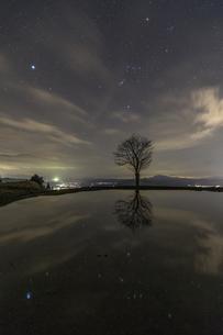 長岡市川口 夜空のオリオン座と、棚田の水面への映り込み(縦構図)の写真素材 [FYI00245961]