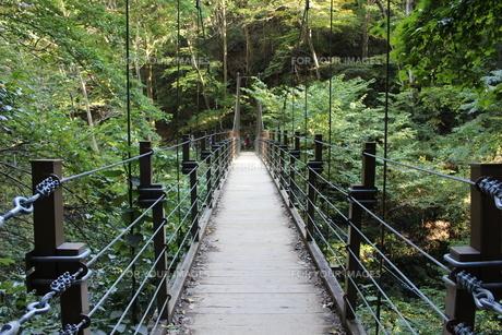 橋の写真素材 [FYI00246194]