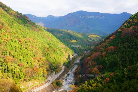 紅葉の綺麗な山々の素材 [FYI00247120]