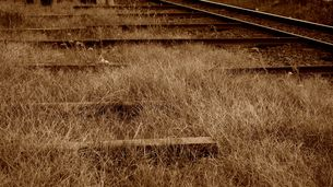 線路の片隅の素材 [FYI00247145]