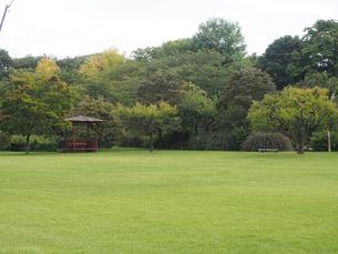 弘前公園 夏の風景の写真素材 [FYI00247261]