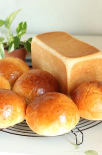 焼きたてパンの写真素材 [FYI00247358]