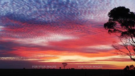 夕焼け雲の素材 [FYI00247371]