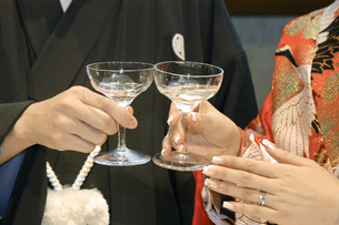 乾杯の写真素材 [FYI00248128]