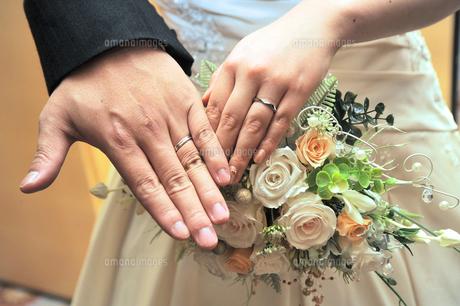 結婚指輪の写真素材 [FYI00248152]
