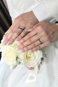 結婚指輪の写真素材 [FYI00248177]